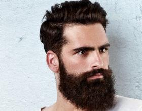 Elegant Long Beard